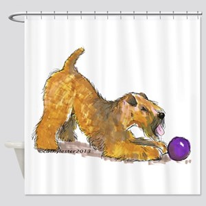 Soft Coated Wheaten Terrier with Ball Shower Curta