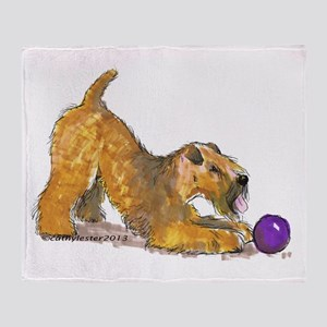 Soft Coated Wheaten Terrier with Ball Throw Blanke