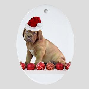 Christmas Dogue de Bordeaux puppy Ornament (Oval)