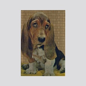 Vintage Basset Hound Rectangle Magnet
