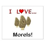 I Love Morels Small Poster