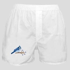 Christmas Blue Jays Boxer Shorts