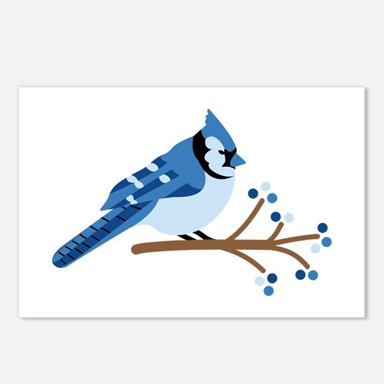 Christmas Blue Jays Postcards (Package of 8)