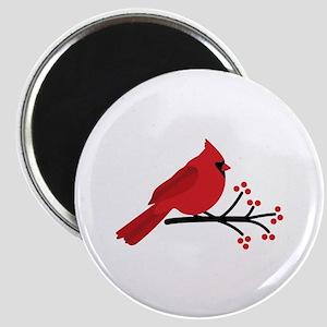 Christmas Cardinals Magnets