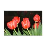 Red Tulips Mini Poster Print