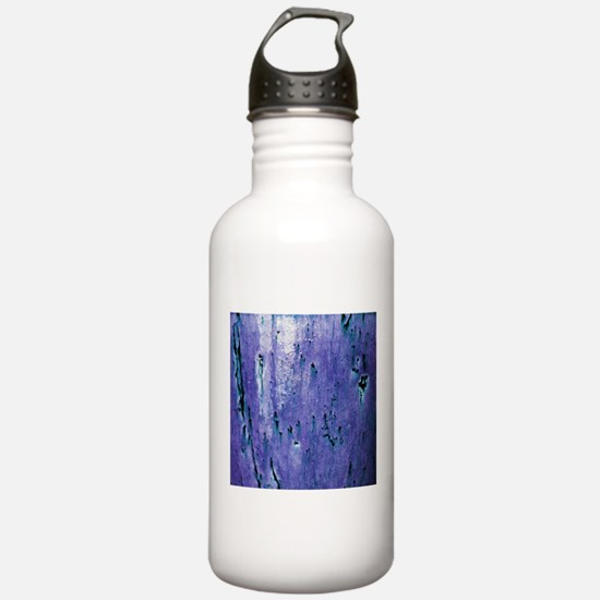 Vase 3 Water Bottle