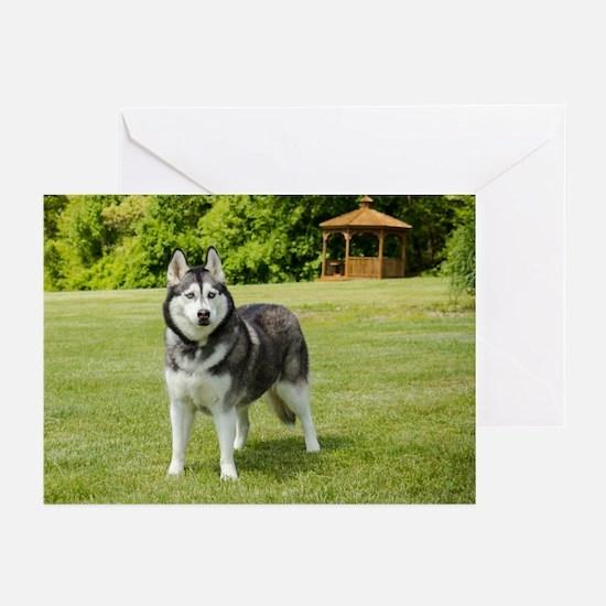 2014 DogDayz Arwin Greeting Cards (Pk of 10)
