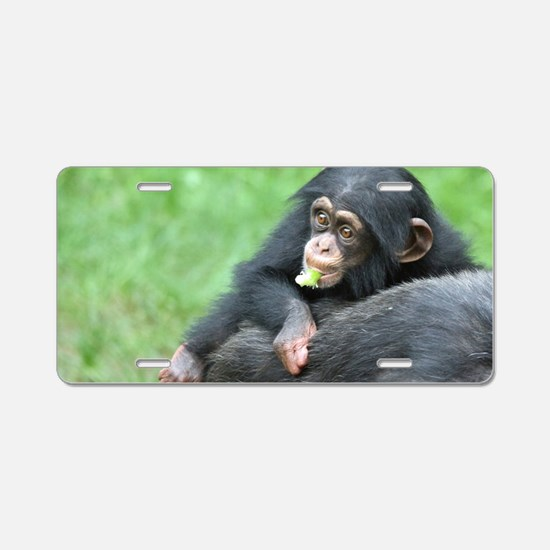 Chimpanzee005 Aluminum License Plate