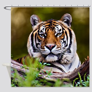 SHOWER CURTAIN Tiger