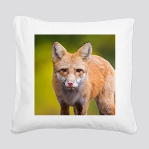 Red fox Square Canvas Pillow