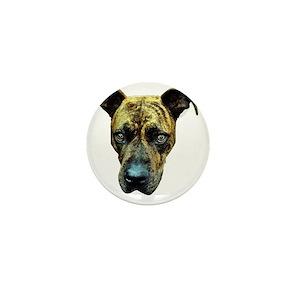 887a73d81d00d Brindle Pitbull Buttons - CafePress