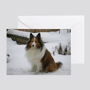 Sheltiebluechristmas Greeting Card
