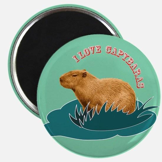 I Love Capybaras Magnets
