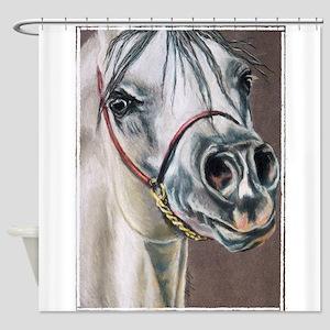 Arabian Stallion Shower Curtain