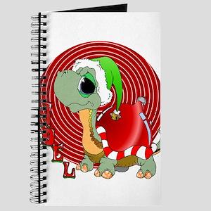 Noel Turtle Journal