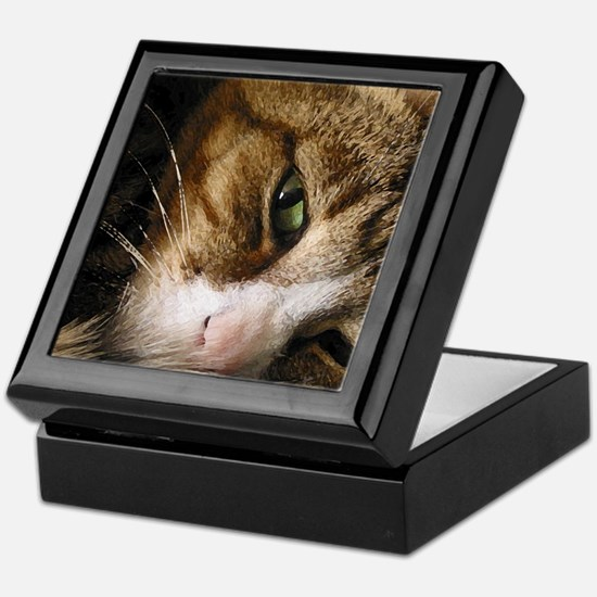 Unique Cats curled up Keepsake Box