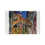 Tiger Roar Magnets