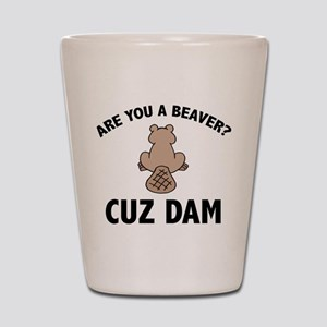 Are You A Beaver? Cuz Dam Shot Glass