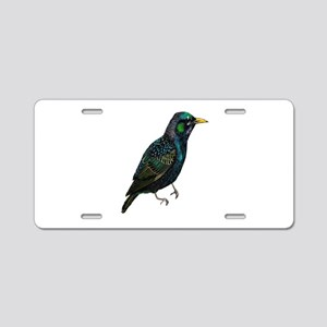 NATURED NOW Aluminum License Plate