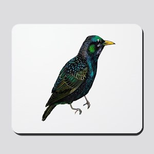 NATURED NOW Mousepad