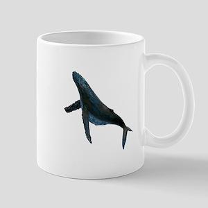 ASCENT ON Mugs
