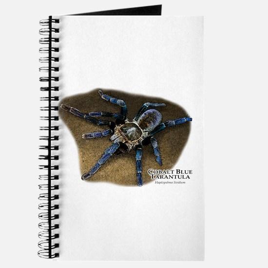 Cobalt Blue Tarantula Journal