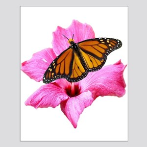 Hibiscus And Butterfly Posters