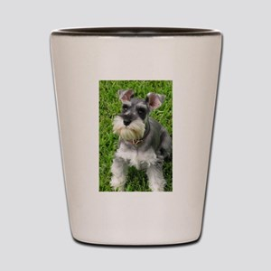 Schnauzer Shot Glass