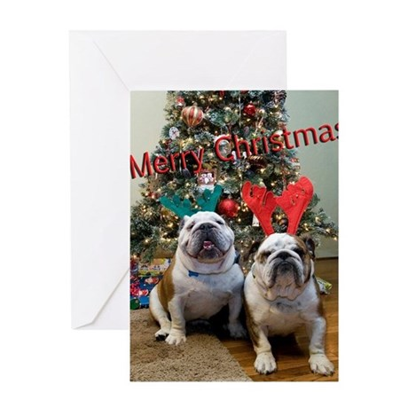 English Bulldog Christmas Greeting Card