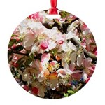 What spring does to cherry trees Round Ornament
