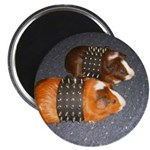 Butch Guineas Magnet