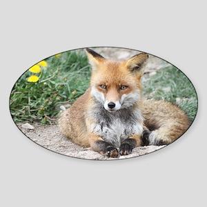 Fox002 Sticker (Oval)