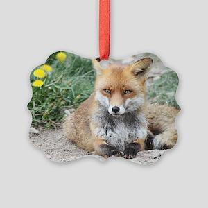 Fox002 Picture Ornament