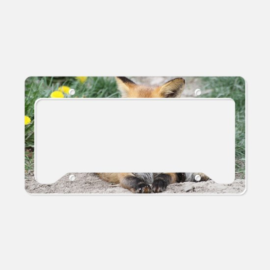Fox002 License Plate Holder
