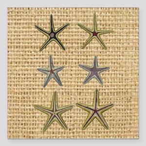 "starfish  seashell burla Square Car Magnet 3"" x 3"""