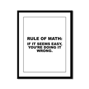 Rule Of Math Framed Panel Print