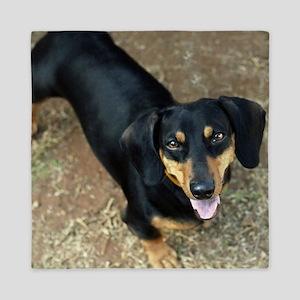 Dachshund Dog Queen Duvet