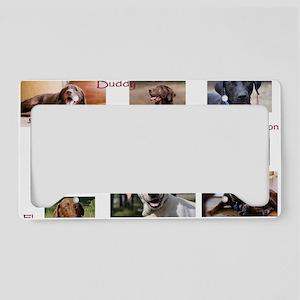 Oversize Collage License Plate Holder