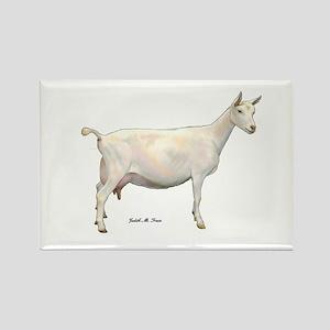 Saanen Dairy Goat Rectangle Magnet