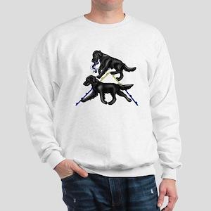 Flat Coated Retrievers Agility Sweatshirt