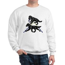 Flat Coated Retrievers Agility Sweatshirt