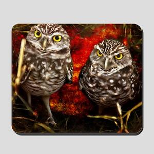 The Burrowing Owls Mousepad