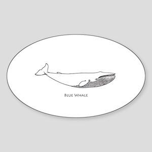 Blue Whale (line art) Sticker