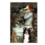 Ophelia & Border Collie Postcards (Package of 8)