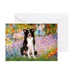 Garden & Border Collie Greeting Cards (Pk of 10)