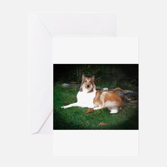 Collie laying Greeting Cards