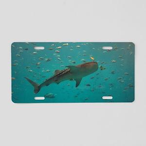 whaleshark Aluminum License Plate