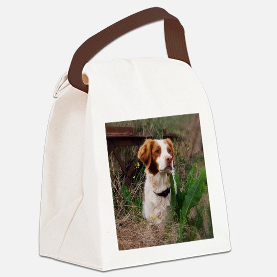 at one with nature.jpg Canvas Lunch Bag