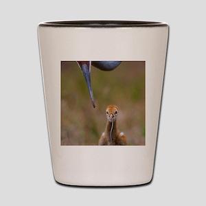aaa Shot Glass