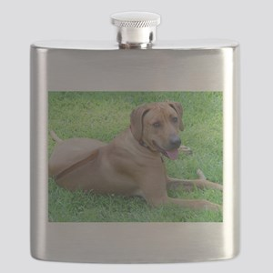 Ridgeback Flask